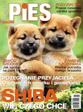 Przyjaciel Pies 11.2015 Okładka
